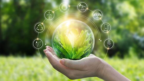 environment, environmental sustainability, eco-friendly
